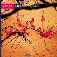 Calendrier Nature 2013