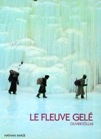 Couverture Fleuve gelé